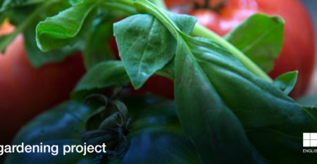 Banner-new-template_Social-gardening-project