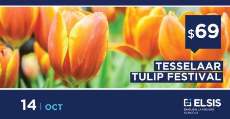 Tulips-festival-ELSIS-01