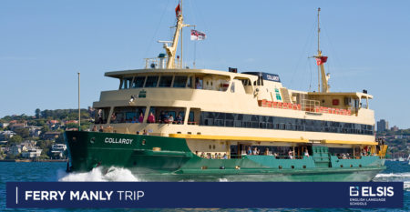 ferry-manly
